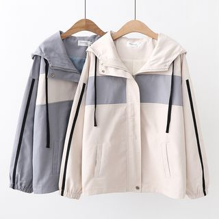 Color Block Hooded Zip Jacket from Aigan