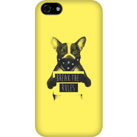 Balazs Solti Break The Rules Phone Case for iPhone and Android - iPhone 5C - Snap Case - Matte from Balazs Solti