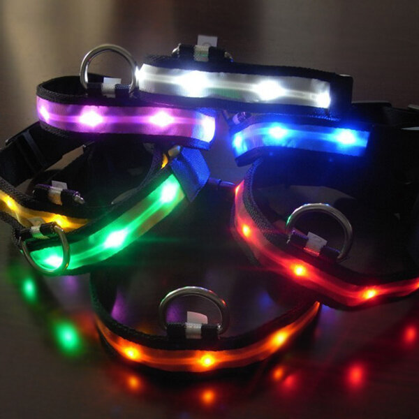 Size S Nylon Safety Flashing Glow Light LED Pet Dog Collar from Banggood