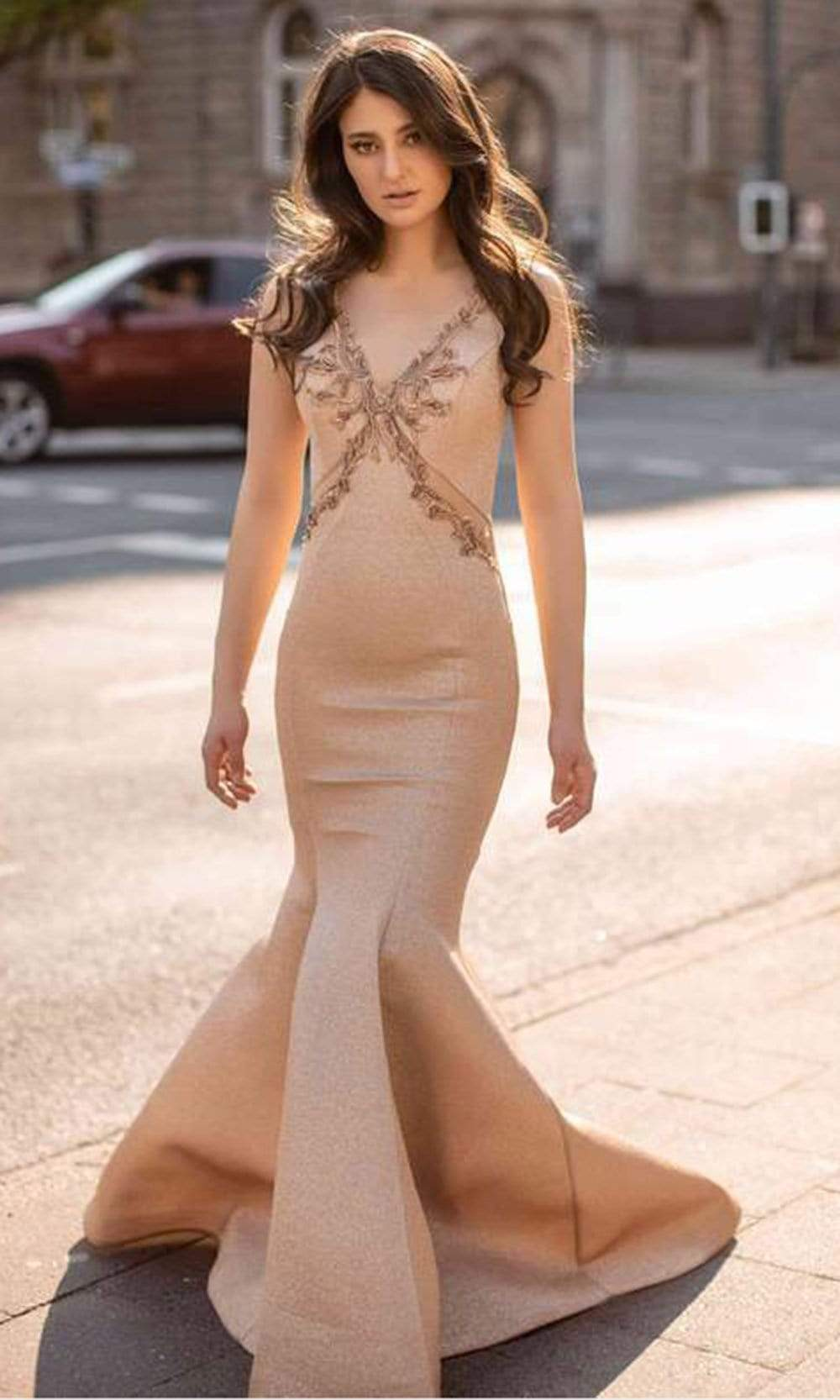 Chic and Holland - AN3122 V Neck Flawless Mermaid Gown from Chic and Holland