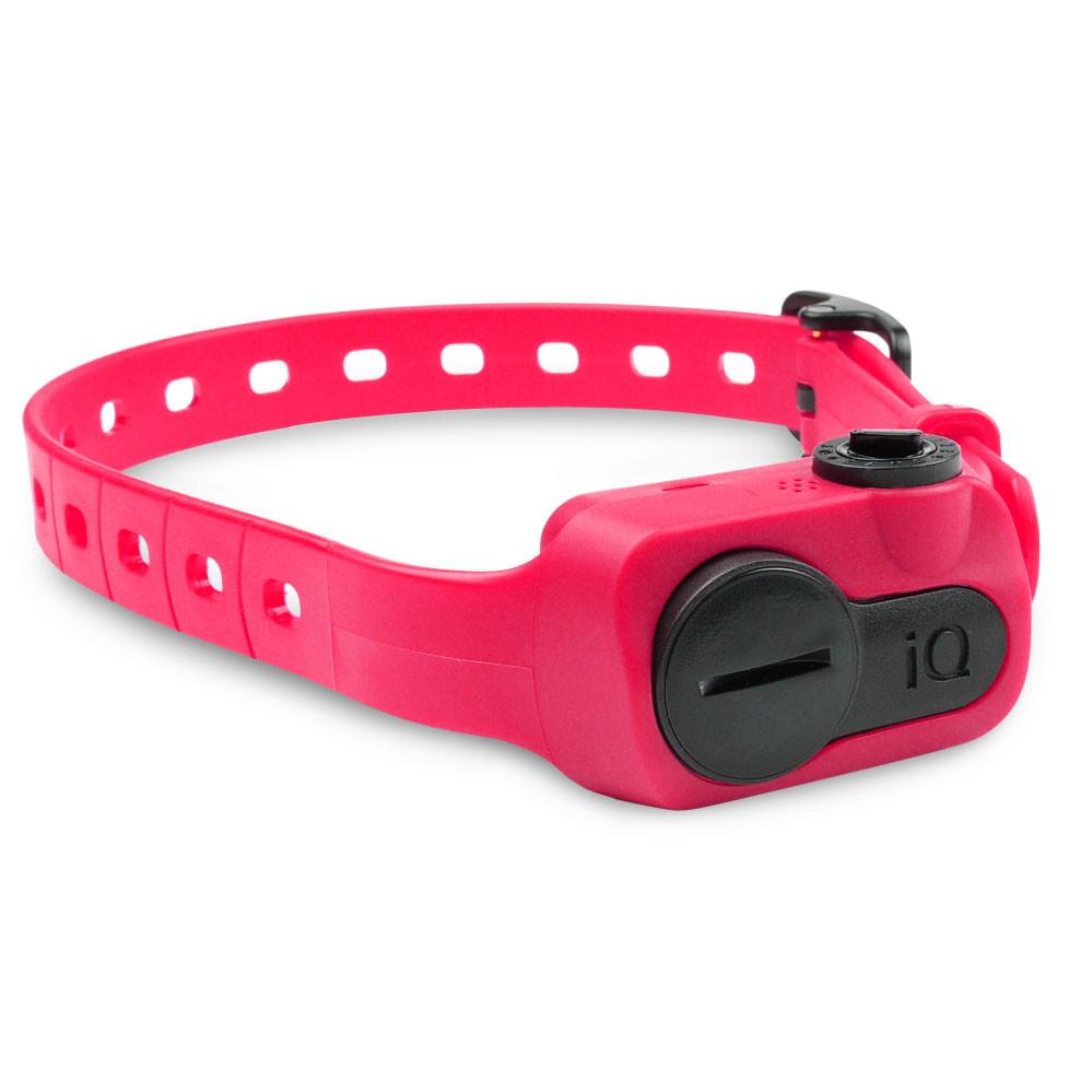 Dogtra IQ-BARK-PNK iQ No Bark Collar Pink from Dogtra