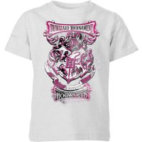 Harry Potter Triwizard Tournament Hogwarts Kids' T-Shirt - Grey - 5-6 Years - Grey from Harry Potter
