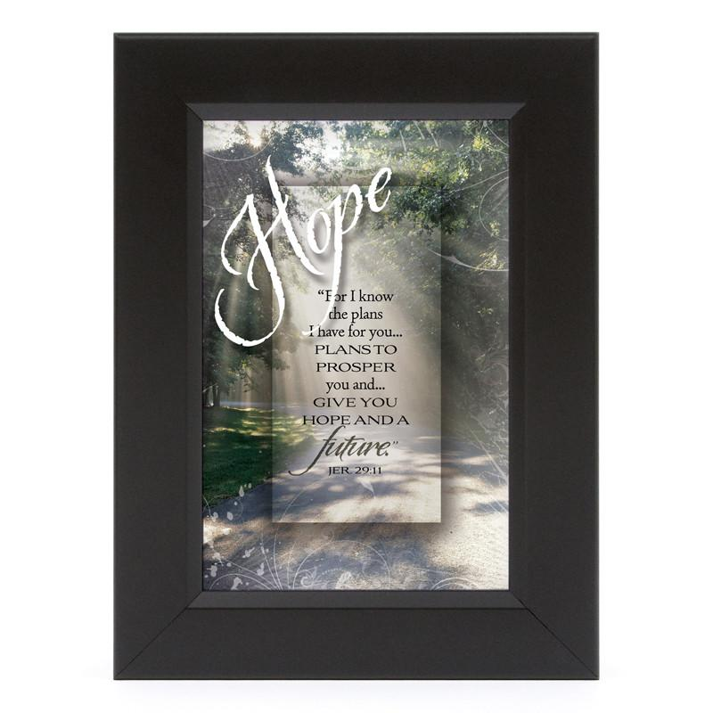 James Lawrence 7122 Hope-For I Know Shadow Box Framed Wall Art from James Lawrence