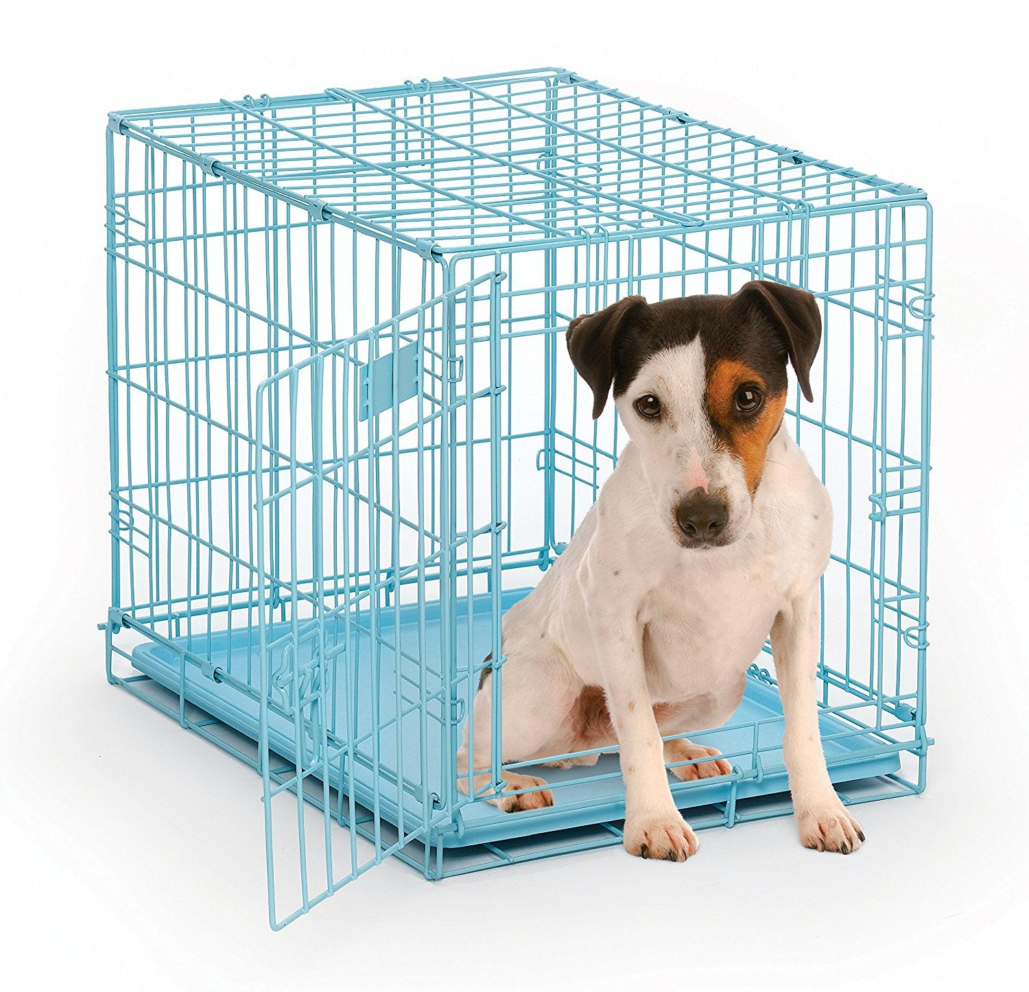 Midwest 1524BL iCrate Single Door Dog Crate from Midwest