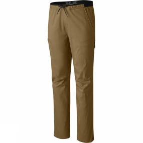 Mens AP Scrambler Pants from Mountain Hardwear