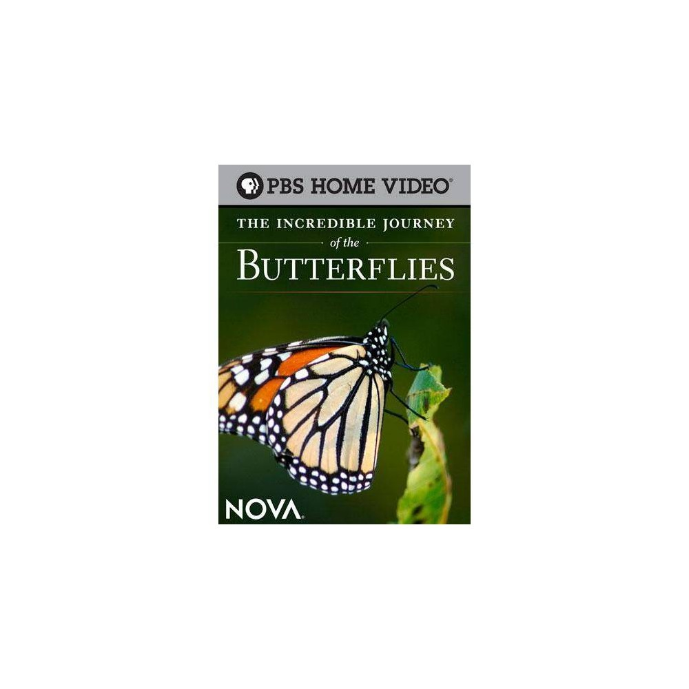 Nova: The Incredible Journey of the Butterflies (DVD) from NOVA