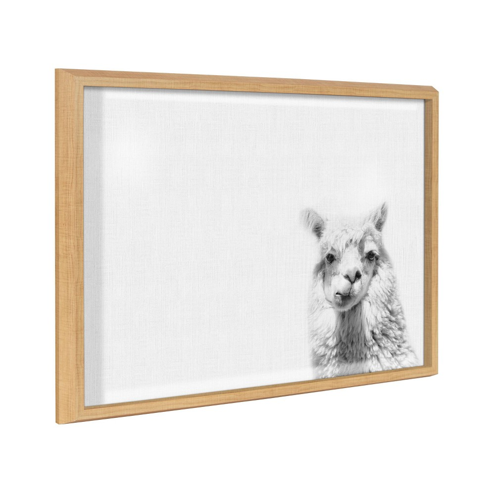 "18"" x 24"" Blake Alpaca by Simon Te of Tai Prints Framed Printed Glass Dry Erase Board Natural - Kate & Laurel All Things Decor from Kate & Laurel All Things Decor"