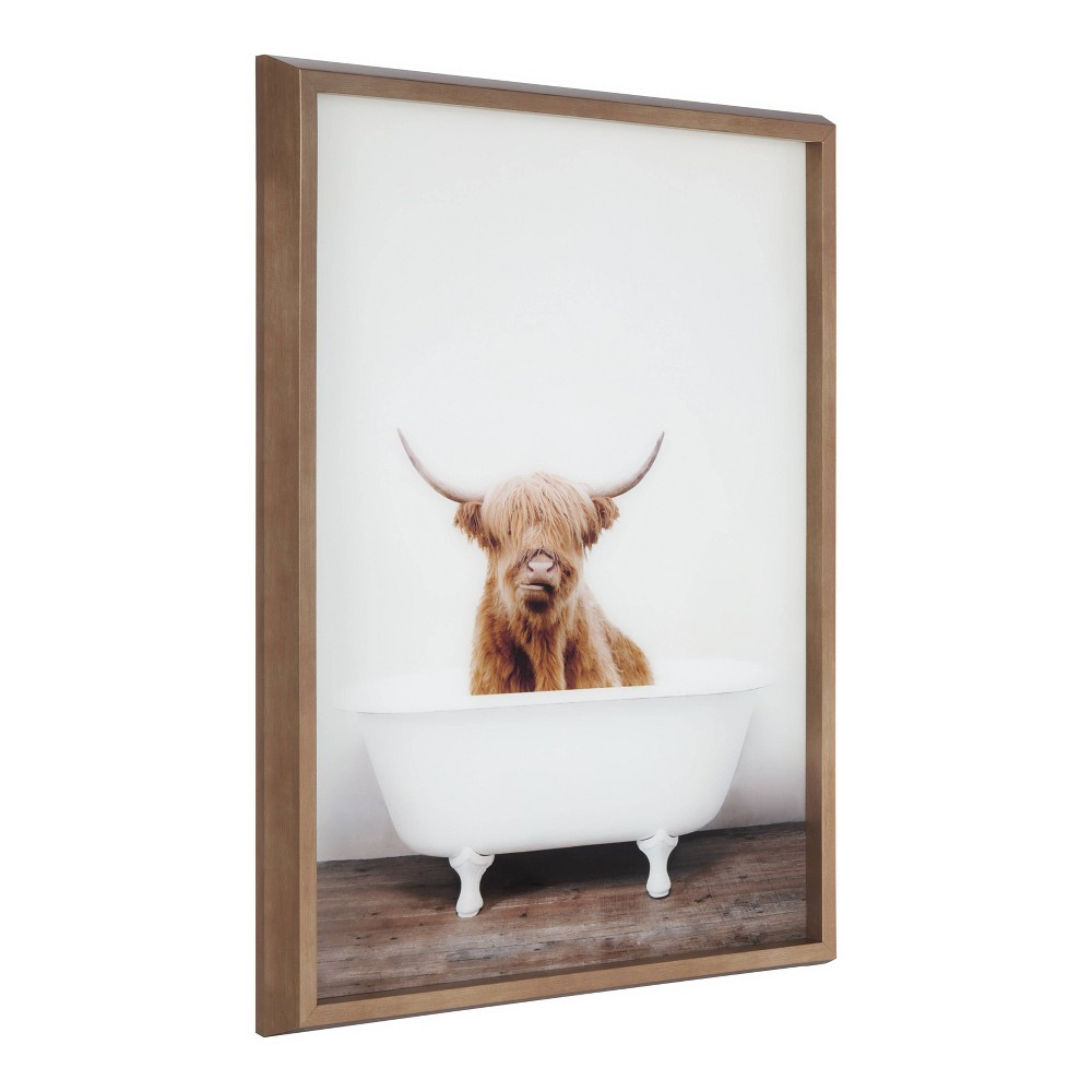 "18"" x 24"" Blake Highland Cow in Tub Framed Printed Glass by Amy Peterson Gold - Kate and Laurel from Kate & Laurel All Things Decor"