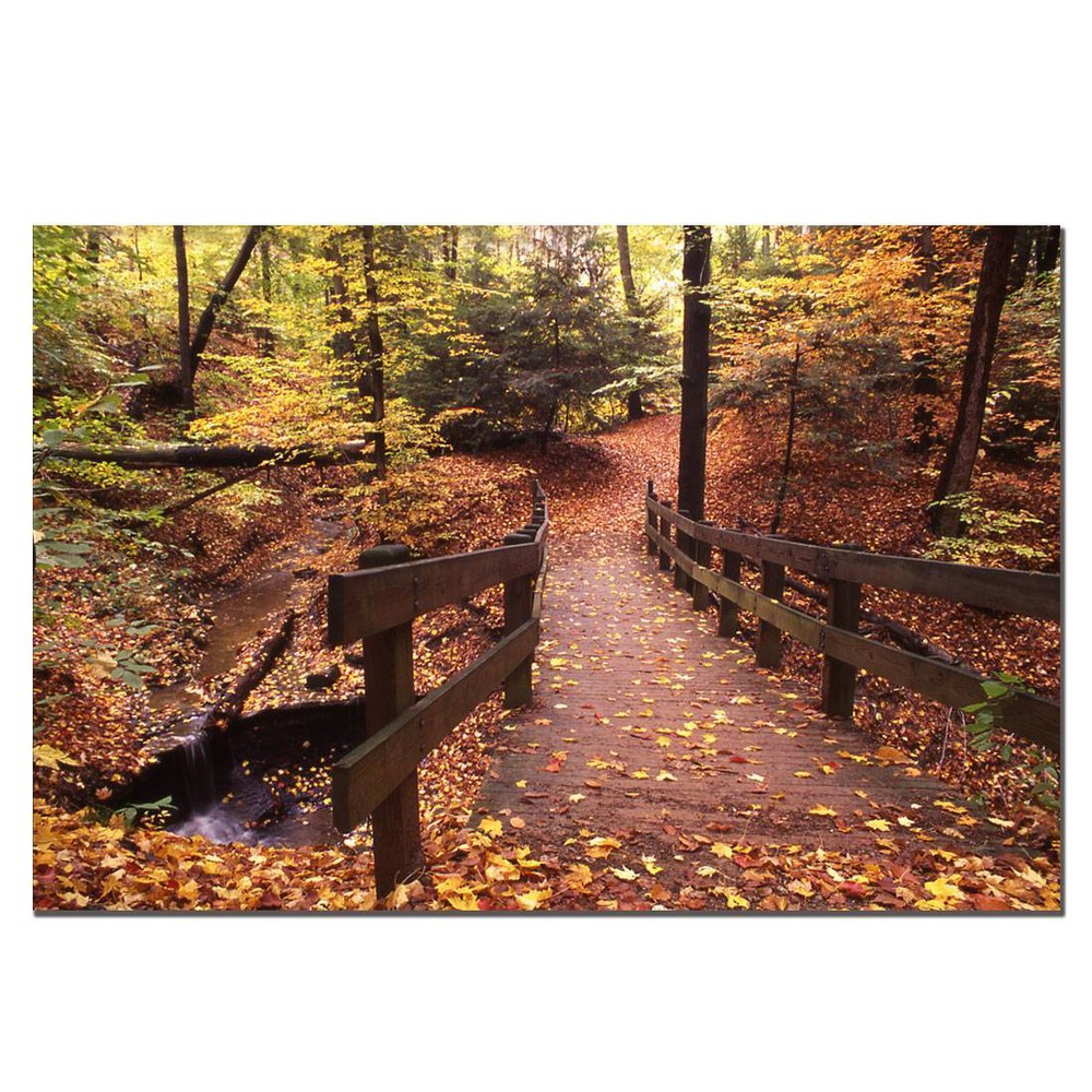 "16"" x 24"" Autumn Bridge by Kurt Shaffer - Trademark Fine Art from Trademark Global"