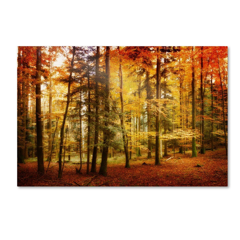 "30"" x 47"" Brilliant Fall Color by Philippe SainteLaudy - Trademark Fine Art from Trademark Global"