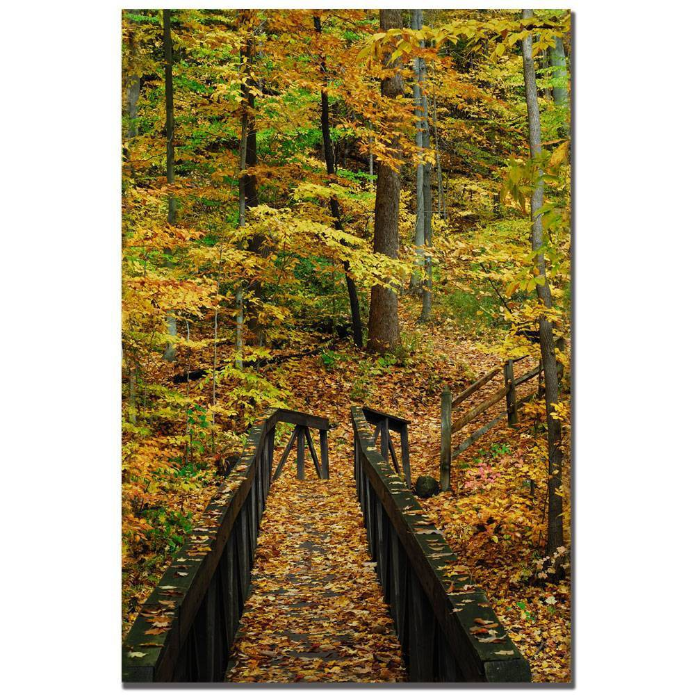 "22"" x 32"" Fall Bridge by Kurt Shaffer - Trademark Fine Art from Trademark Global"