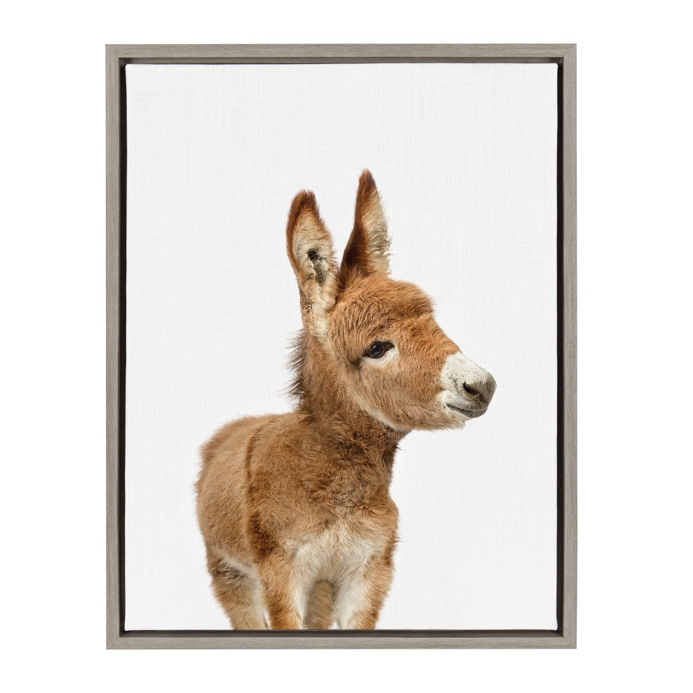 "18"" x 24"" Sylvie Baby Donkey Framed Canvas by Amy Peterson Gray - Kate and Laurel from Kate & Laurel All Things Decor"
