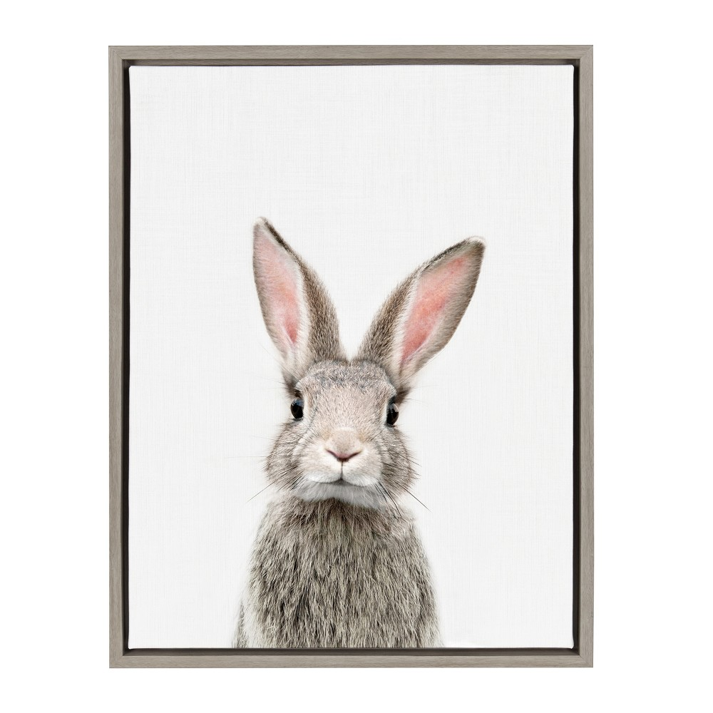 "18"" x 24"" Sylvie Young Rabbit Framed Canvas by Amy Peterson Gray - Kate and Laurel from Kate & Laurel All Things Decor"