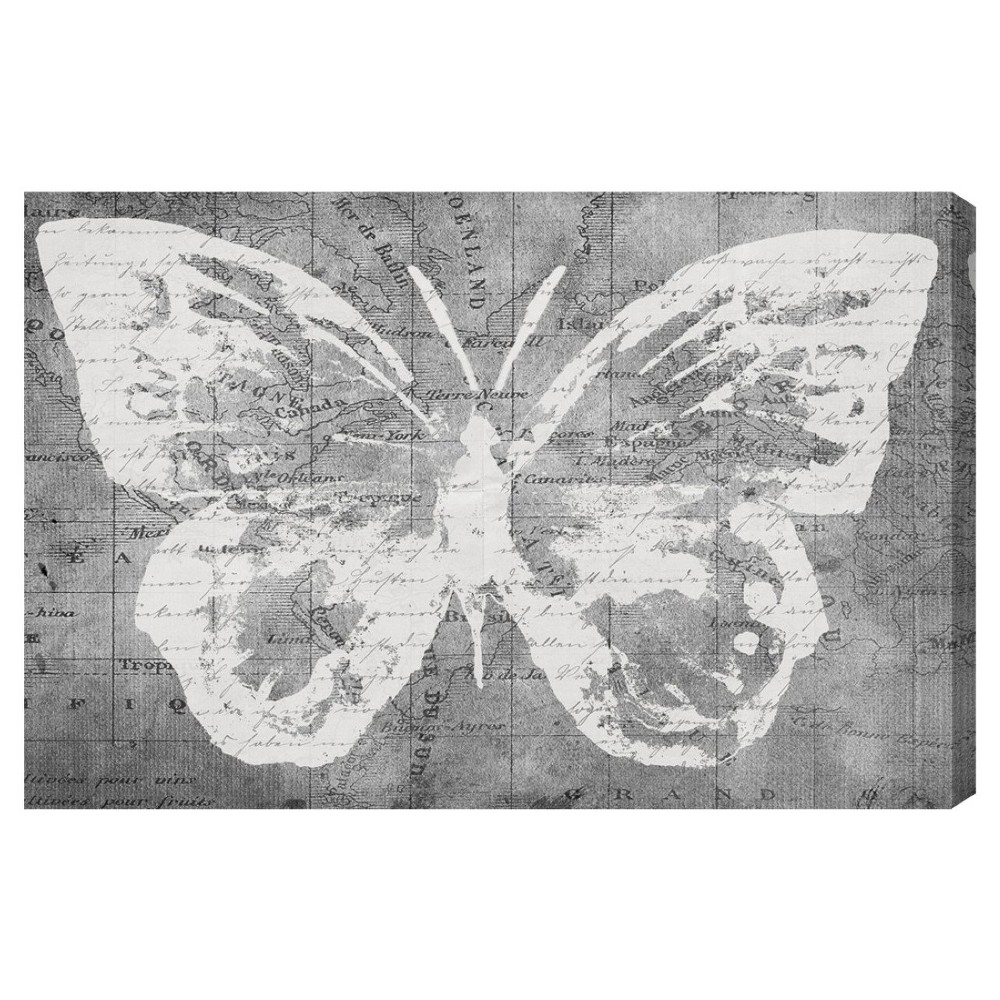 "Oliver Gal Unframed Wall ""Traveling Wings"" Canvas Art (24x16), Gray White"