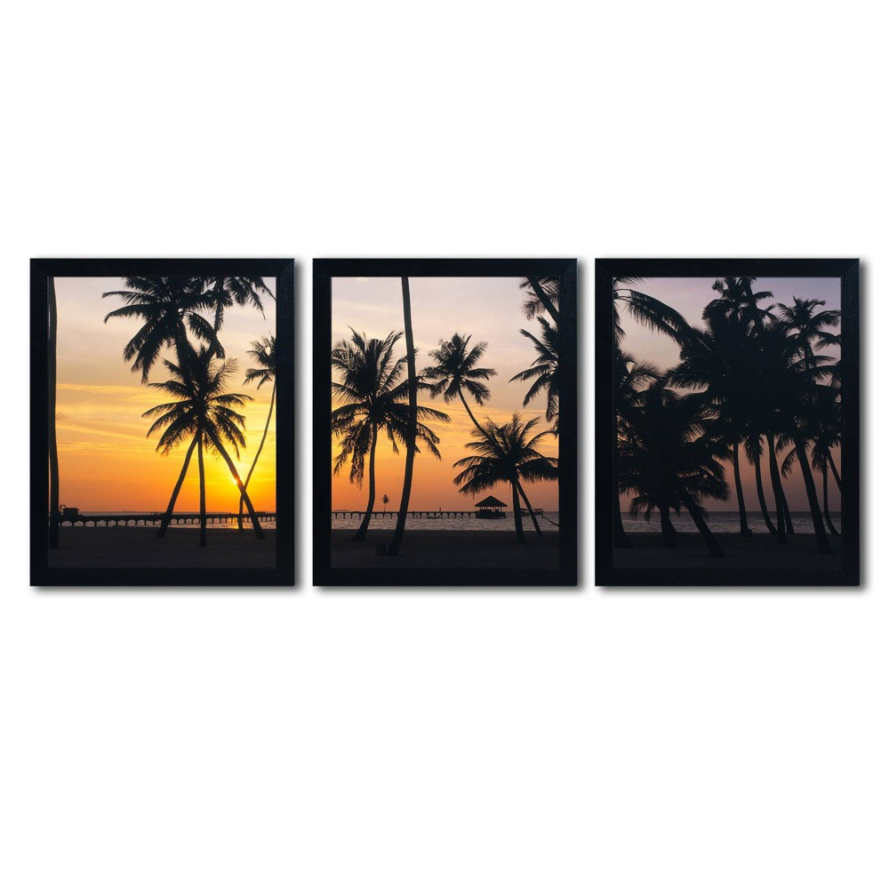 3pc Palm Dream by David Evans - Trademark Fine Art from Trademark Global