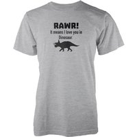 Rawr! It Means I Love You In Dinosaur Grey T-Shirt - XXL - Grey from The Dinosaur Collection