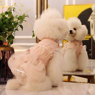 Pet Lace Dress from Puppy Love