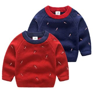 Kids Embroidered Sweater from Seashells Kids