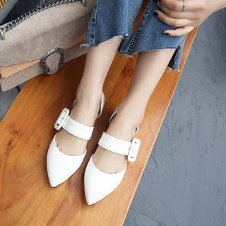 Buckled Pointed Flats from Shoes Galore