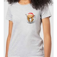 Tobias Fonseca Sloth In A Pocket Xmas Women's T-Shirt - Grey - XXL - Grey from TOBIAS FONSECA