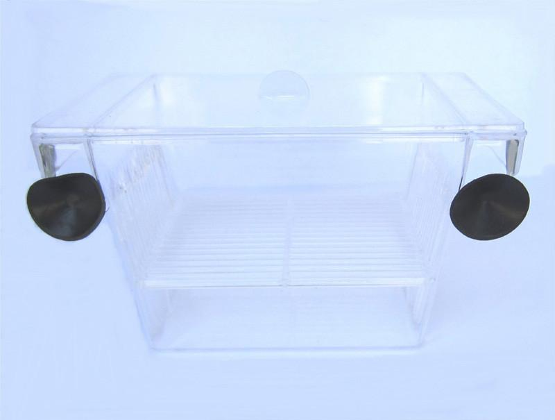 "YML Group H001 Brand New Fish hatchery Tank Size 5L""x2.75W""x2.75H"" from YML Group"